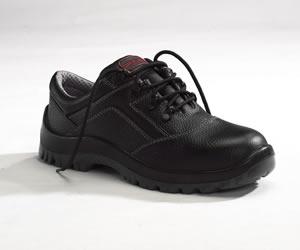 建安康低帮安全鞋CN509